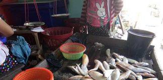 မွန်ဒေသထွက်ငါးများ